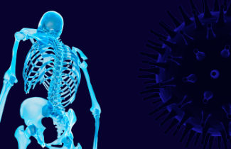 cOVID virus and skeleton